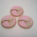 cookie spring 009